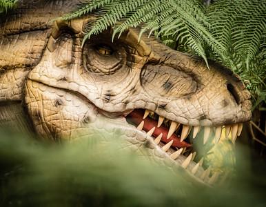 Combe Martin Dinosaur & Wildlife Park, November 2018