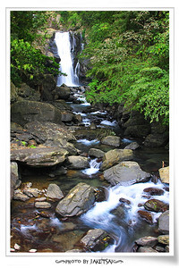 20100328 內洞森林遊樂區