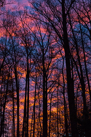 Burke VA Sunrise-Sunset