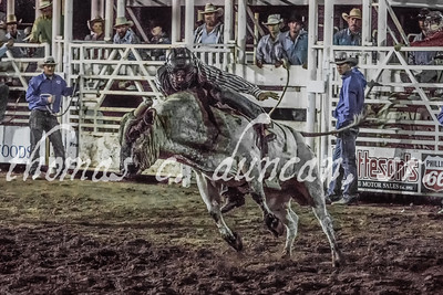Owyhee County Rodeo 2016 (Friday Night)