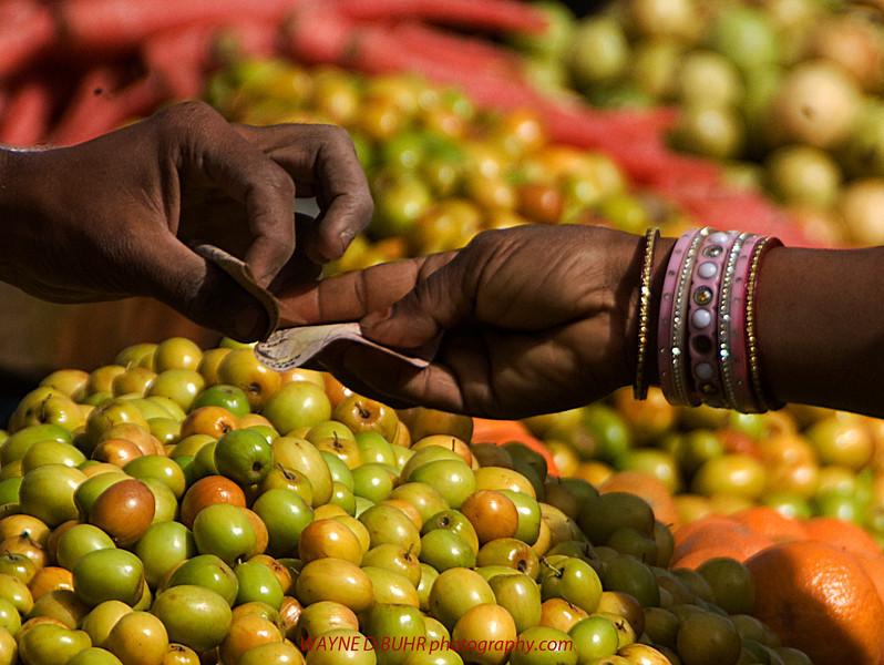 India2010-0211A-485A.jpg