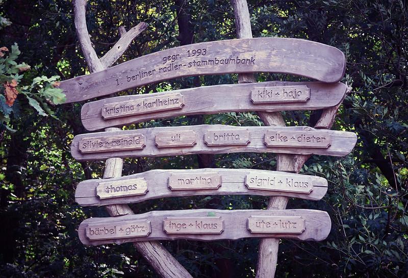 Westlicher Düppeler Forst in Wannsee