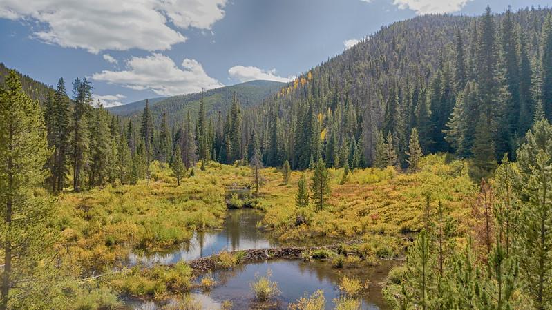 Moose Ponds.jpg