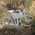 Hobart Ghost Cycle