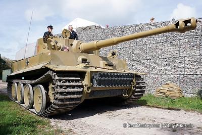 Tiger Day X