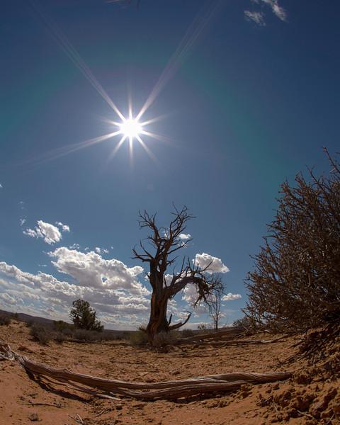 Arizona-Utah-2791-Edit.jpg