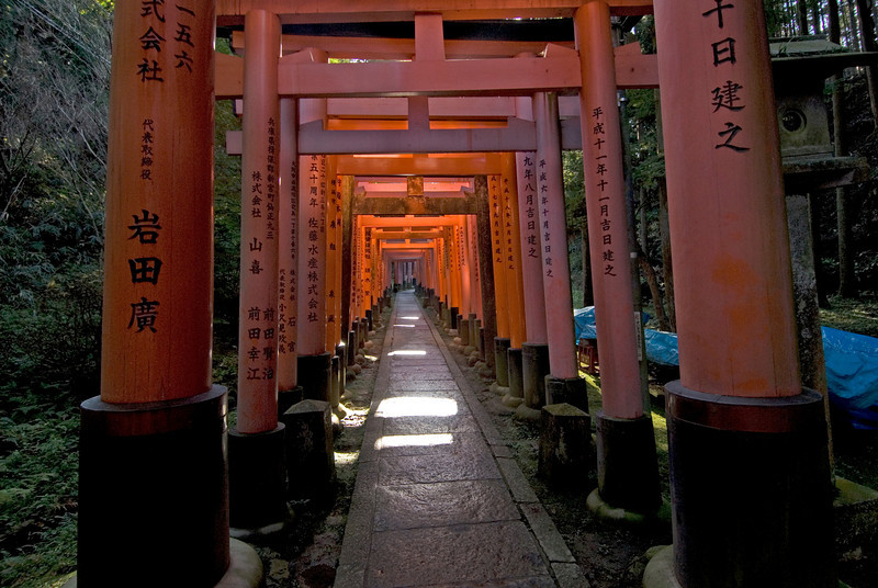 Sunlight shining down on the Fushimi-inari Shrine in Kyoto, Japan