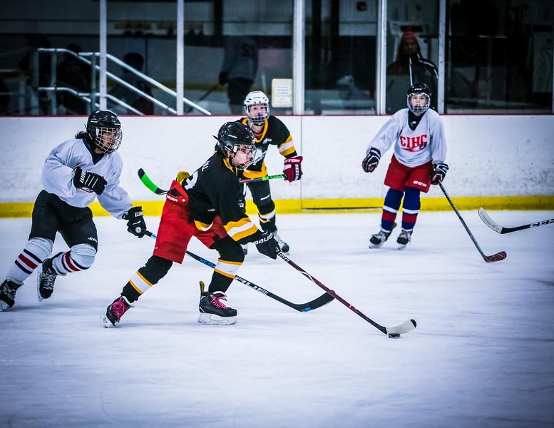 Bruins2-326.jpg
