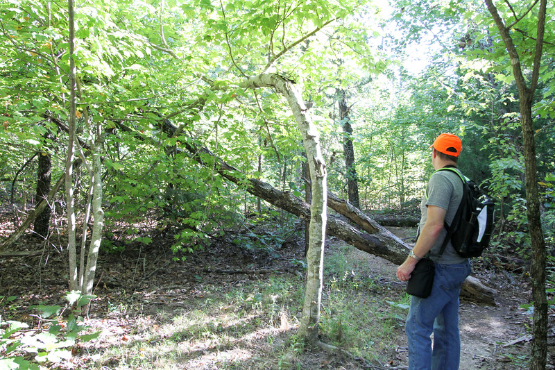 20160918-Ponca Arkansas - Hideout Hollow Trail-24.jpg