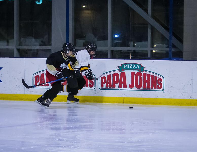 Bruins-41.jpg