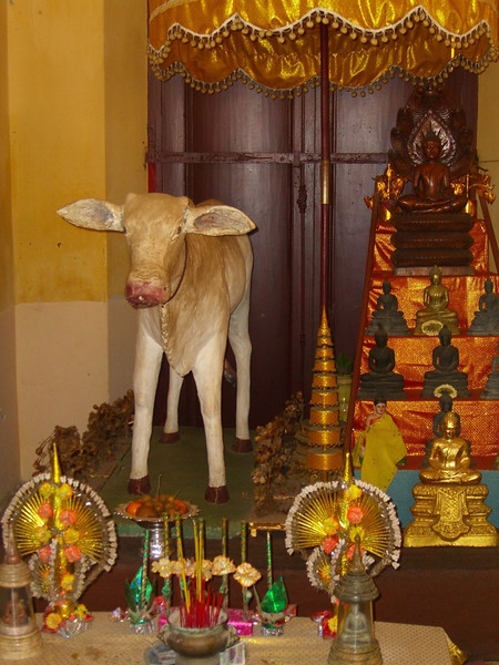 Shrine and Cow - Phnom Penh, Cambodia