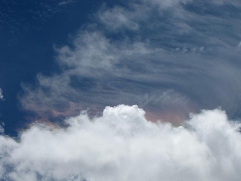 Mt Evans 7-25-2010 (269).jpg