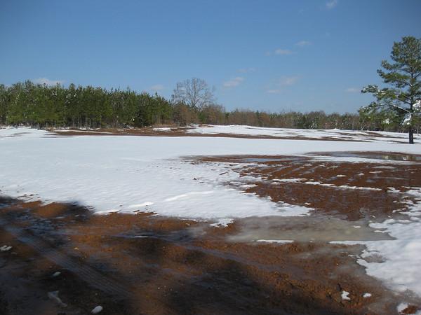 Snow_in_Jackson_2009-03-01