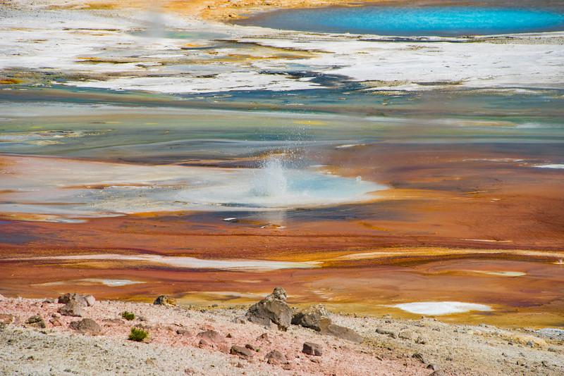 Yellowstone Day 3-5898.jpg