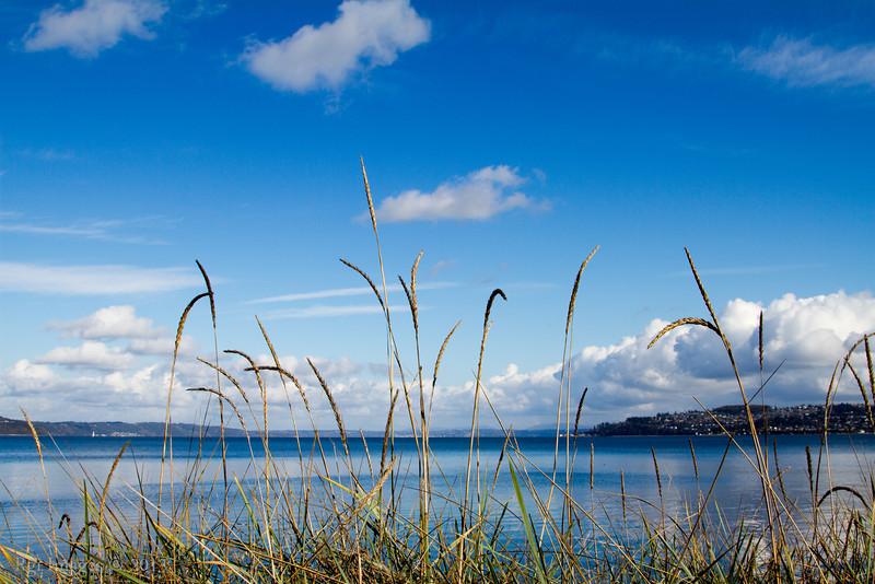 Tacoma_Waterfront_20131103-24.JPG