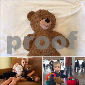 have-you-seen-me-dallas-love-field-helping-little-boy-find-lost-teddy-bear