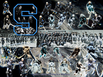 2012 LSHS Hockey Team Collage Review