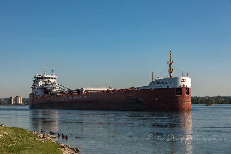 CSL Thunder Bay