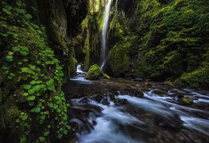 Hidden Gorge