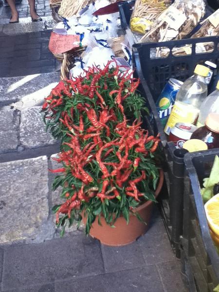 20110812-Ginka-Sicily-20110812--IMG_1076--0206.jpg
