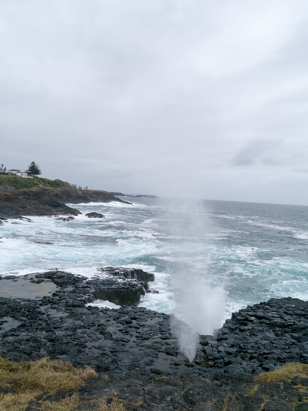 Little Blowhole