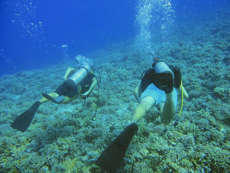 Maui - Hawaii - May 2013 - 14.jpg