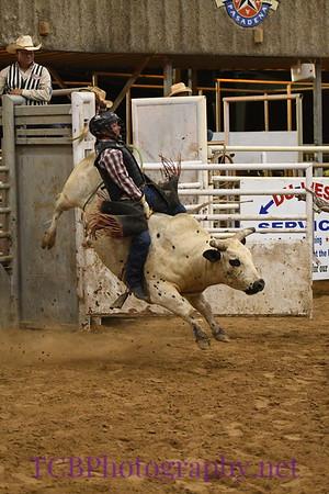 Pasadena Livestock Show and Rodeo