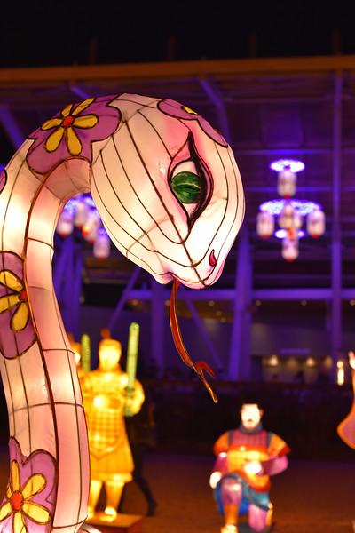Chinese Lantern Festival-5272.jpg