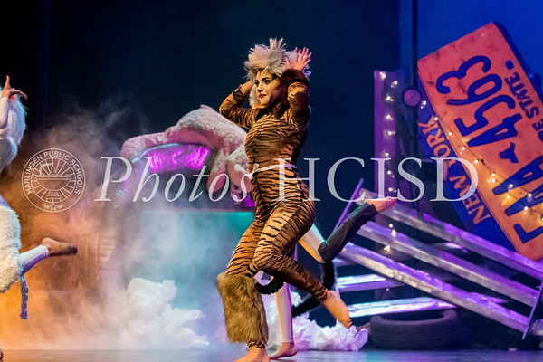 Jellicle PAC Performance
