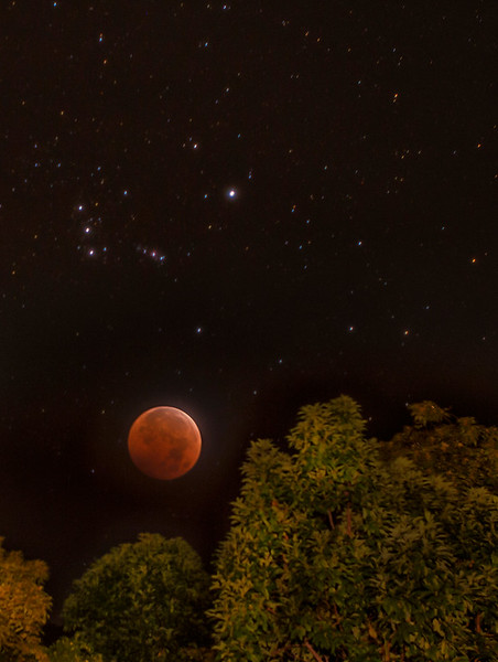 Bloodmoon / Big Island