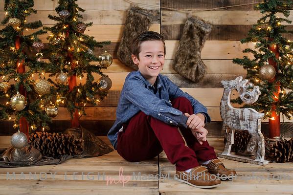 CHRISTMAS MINI 2016