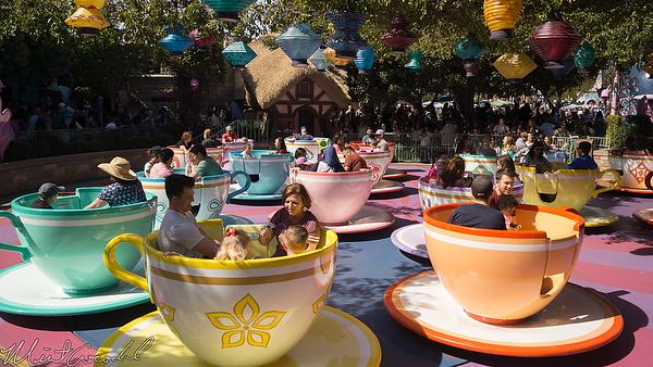 Disneyland Resort, Disneyland, Fantasyland, Mad Tea Party, Mad, Tea, Party, Tea Cups, Cups