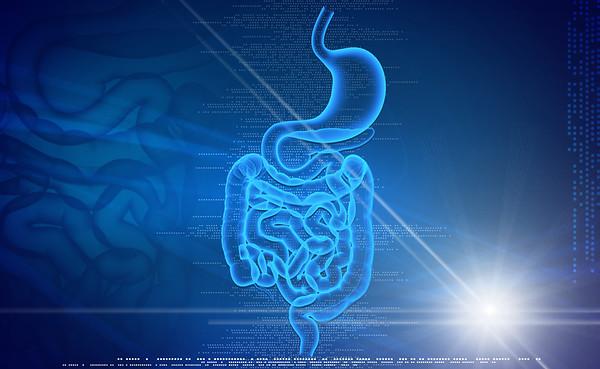 Colon Health Digestive Enzymes