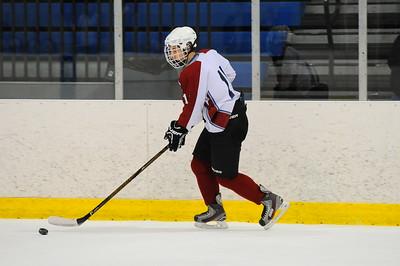 Game 4 - Michigan Ice Hawks Vs Iron River (SEMI)