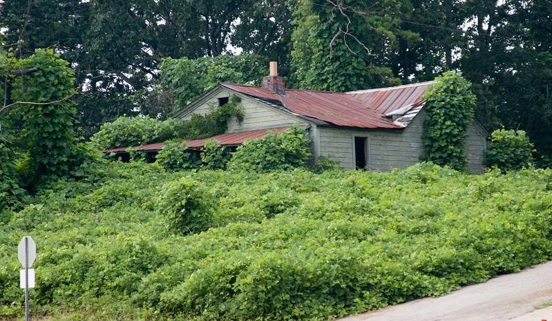 House near Gainesville, Ga.