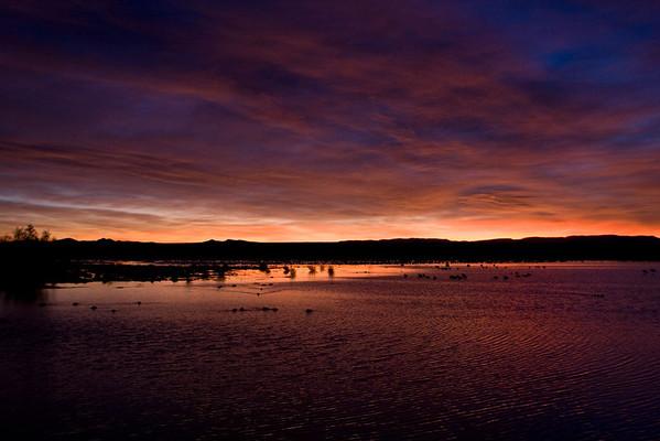 New Mexico - November 2008