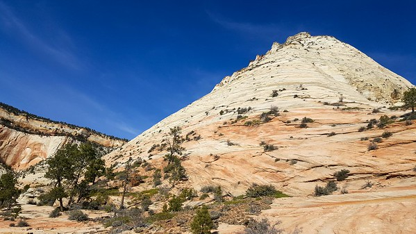 Zion - Aries Butte ('Led by sheep' route)