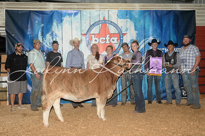 Open Cattle Show Backdrops