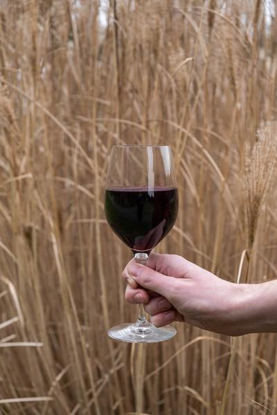 Wine and Chocolate_105.jpg