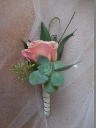 Succulent, rose mixed greens  $25