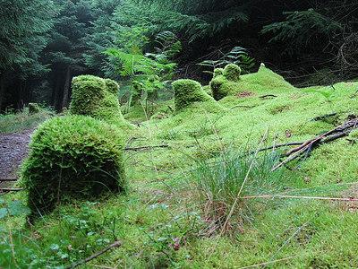 Afan Wales - Aug 06