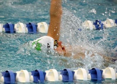 HS Sports - Downriver League Swim Meet Prelims 20