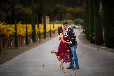 Cristian and Michael Engagement Session