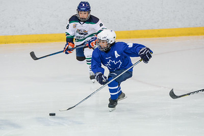 Vancouver Leafs Elite