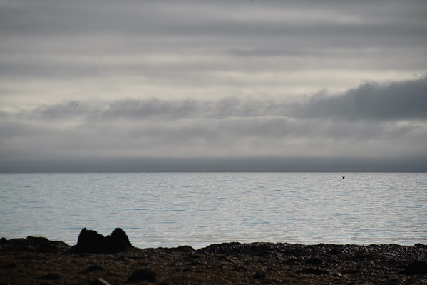 Iceland 2009 Day 13 Drangsnes to Isafjörður