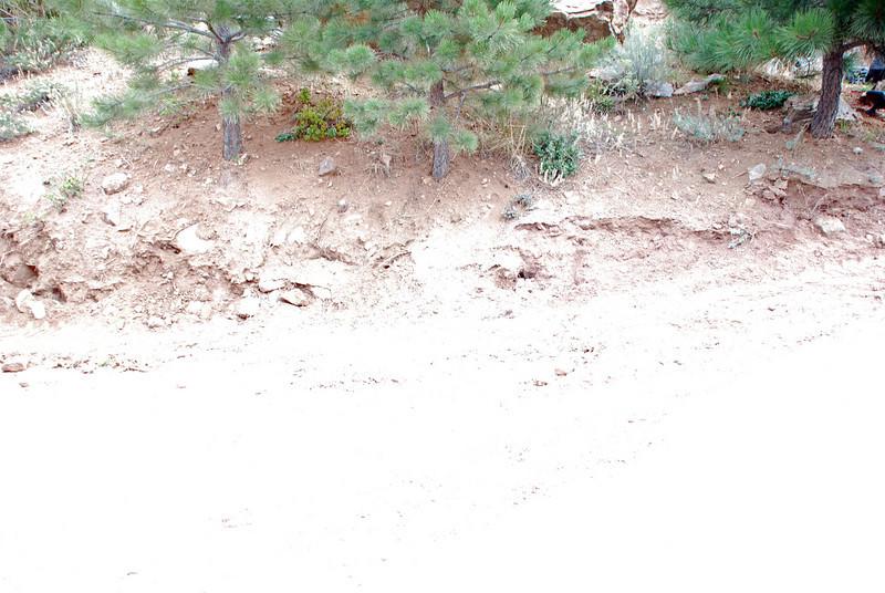 Pictures 08 08-11-08 thru 09-15-08 064_edited-1.JPG