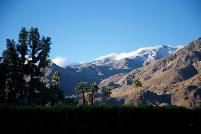 2017-01-01 New Years Day Palm Springs