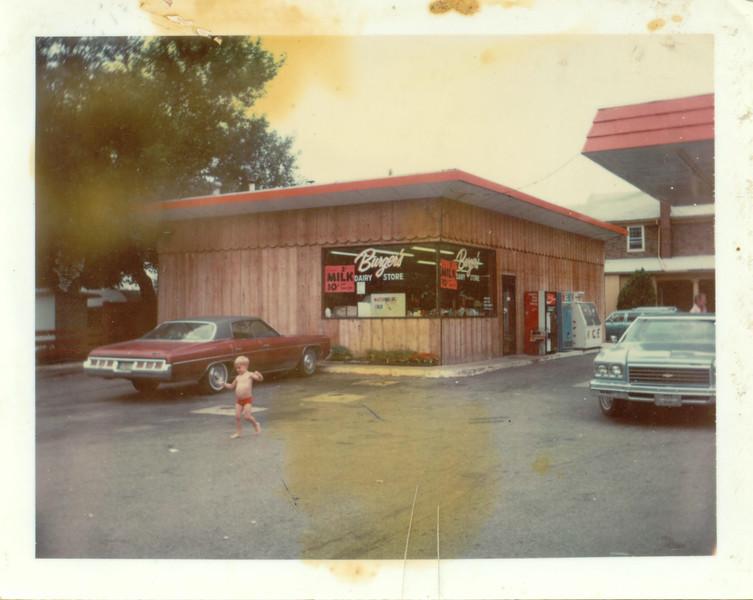 BurgerDiary-PeruIN.jpg