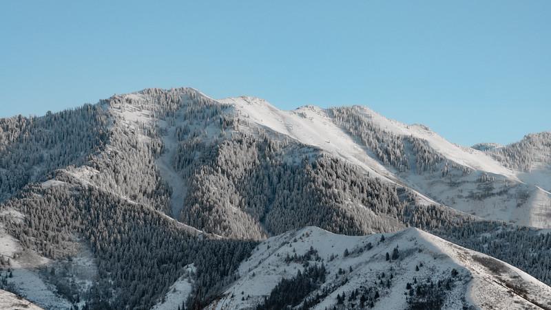 Sundance-26.jpg