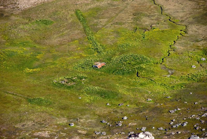 Aðalvík - Lækur. Húsið er hrunið og er að hverfa ofan í hvönnina.